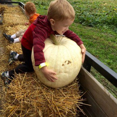 Children on Tractor Ride Pumpkin Patch