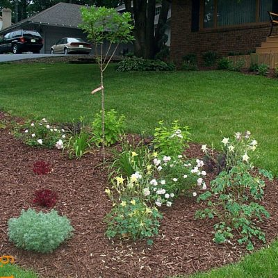 Landscaping services wrf nursery garden center workwithnaturefo